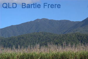 bartle frere